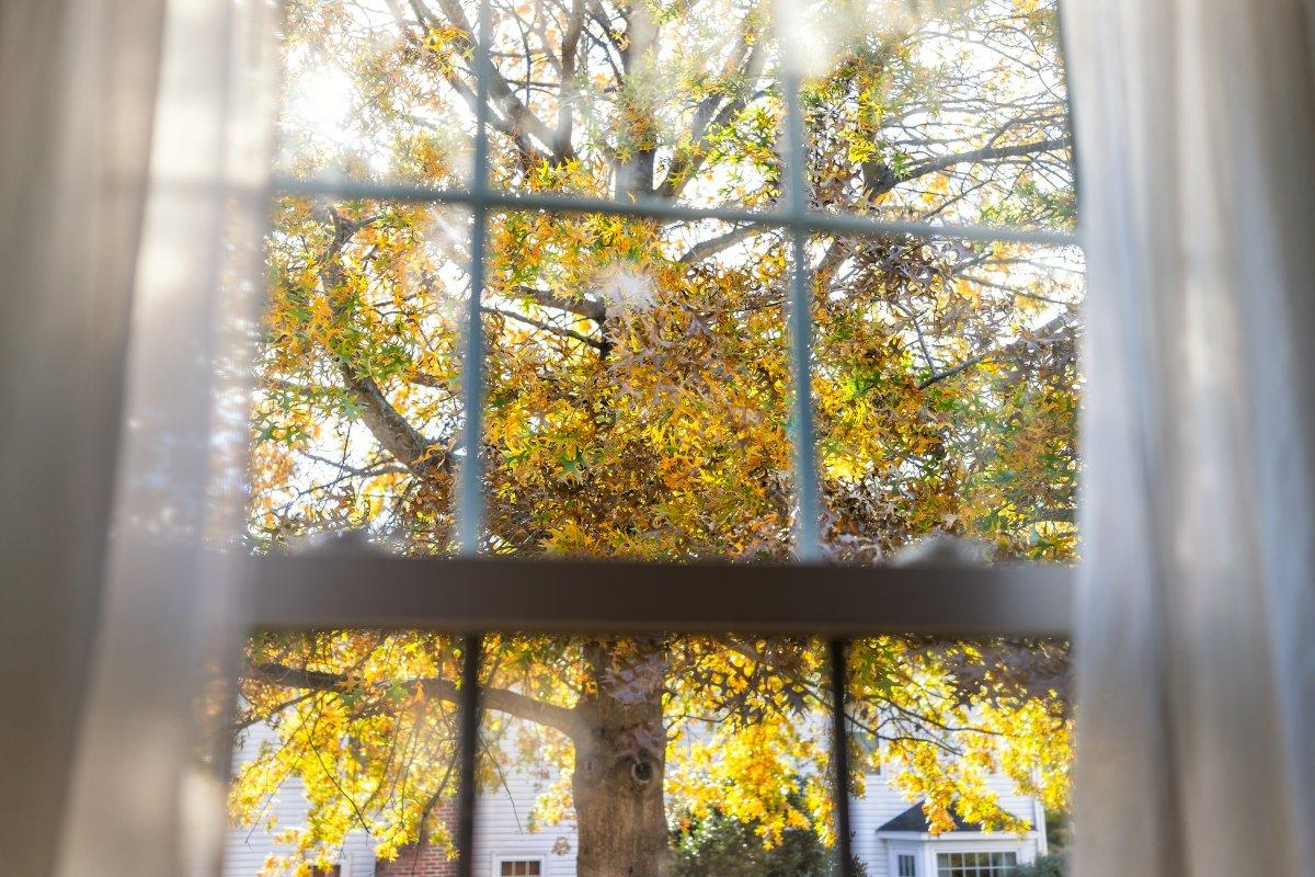 Zaproś jesień do domu, czyli jak udekorować okna